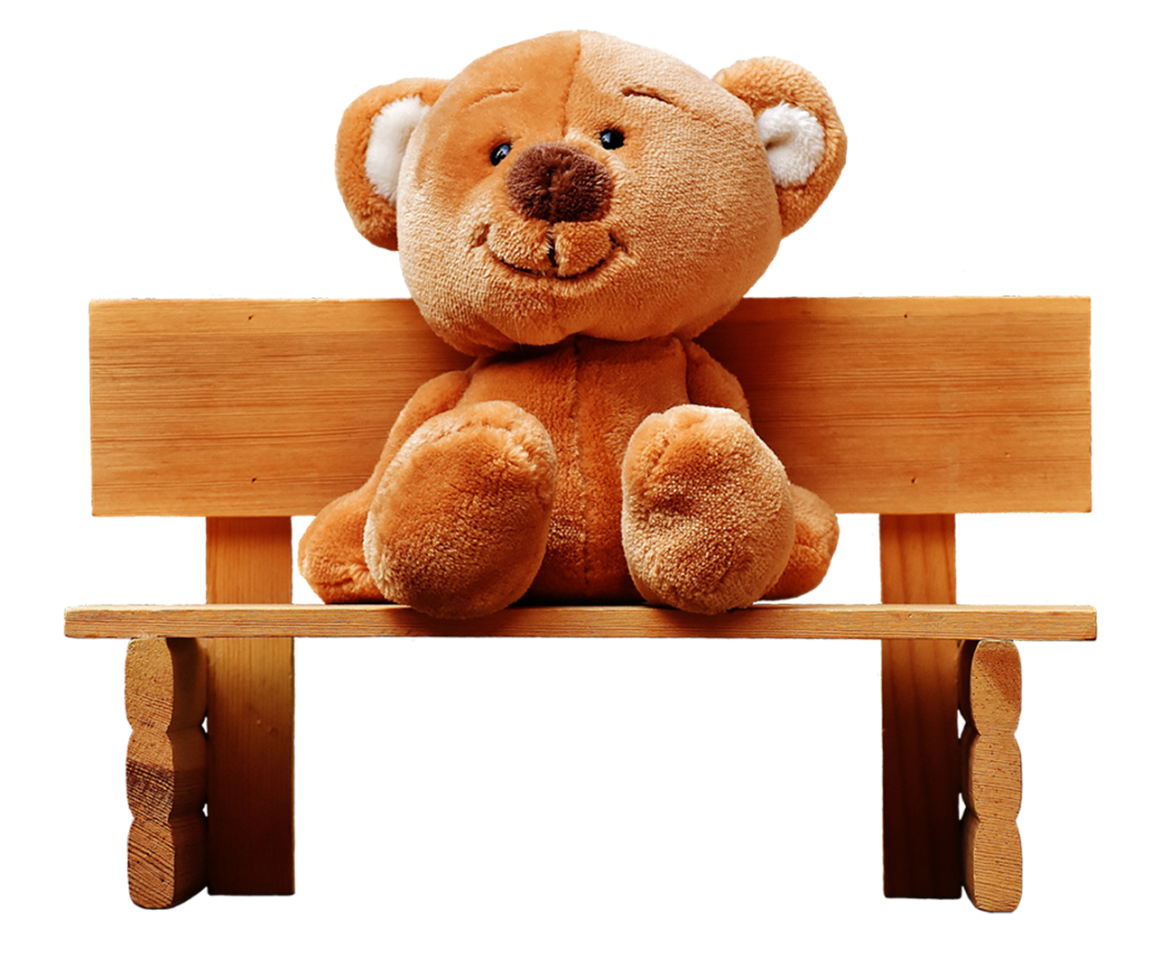 teddy-2710522_1280.png